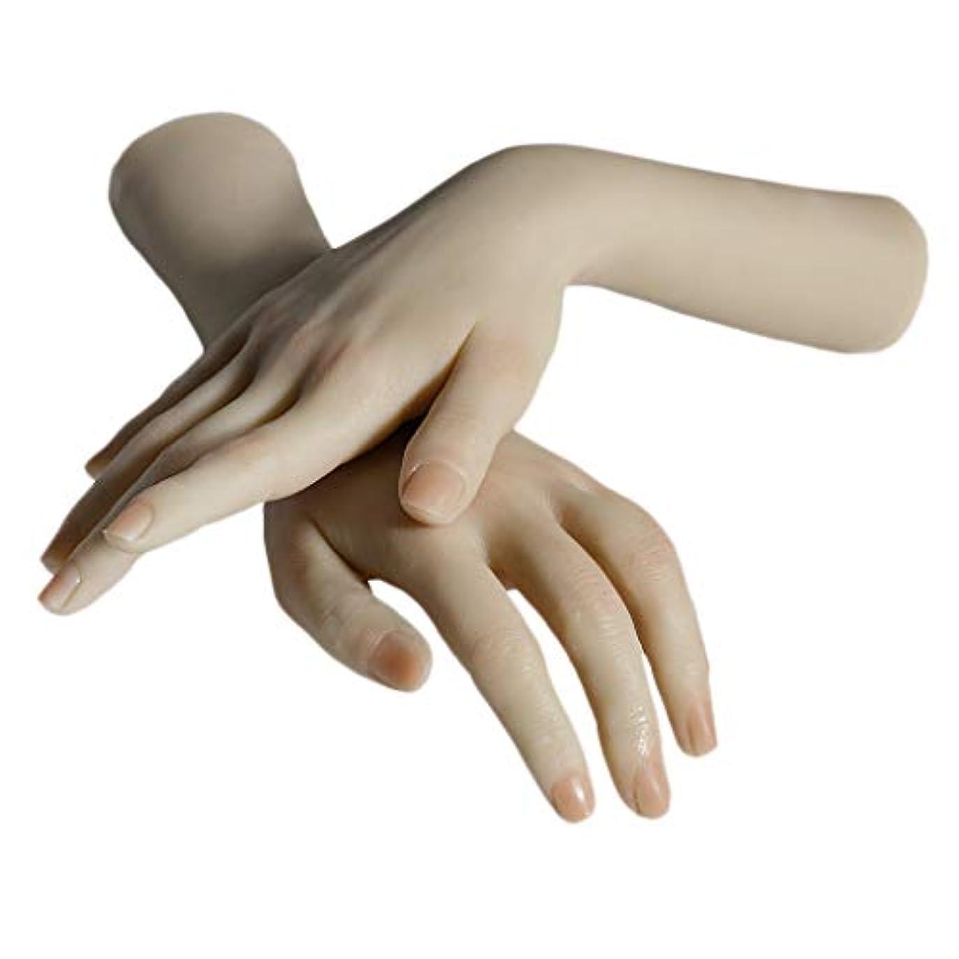 潜在的な接尾辞クレジットPerfeclan ネイルアート マネキンハンド 手表示モデル 手模型 練習 実践手 シリコン