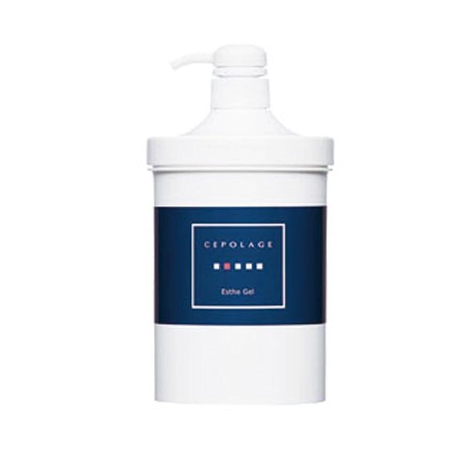 内陸毎回乳剤セポラージュ エステジェル 1000g