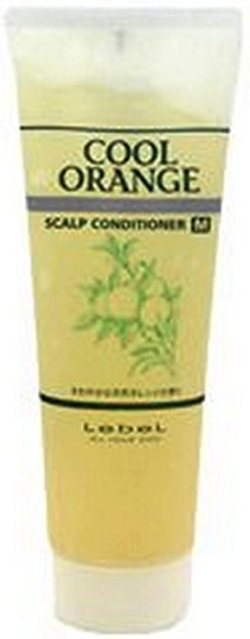 散髪する融合ルベル クールオレンジ スキャルプコンディショナーM(マイルドタイプ) 240g