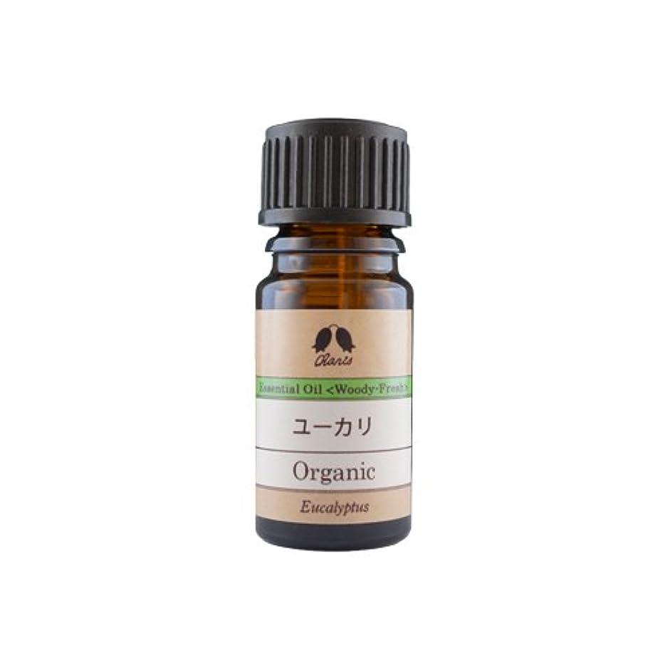 お茶メインチロカリス ユーカリ オーガニック オイル 5ml
