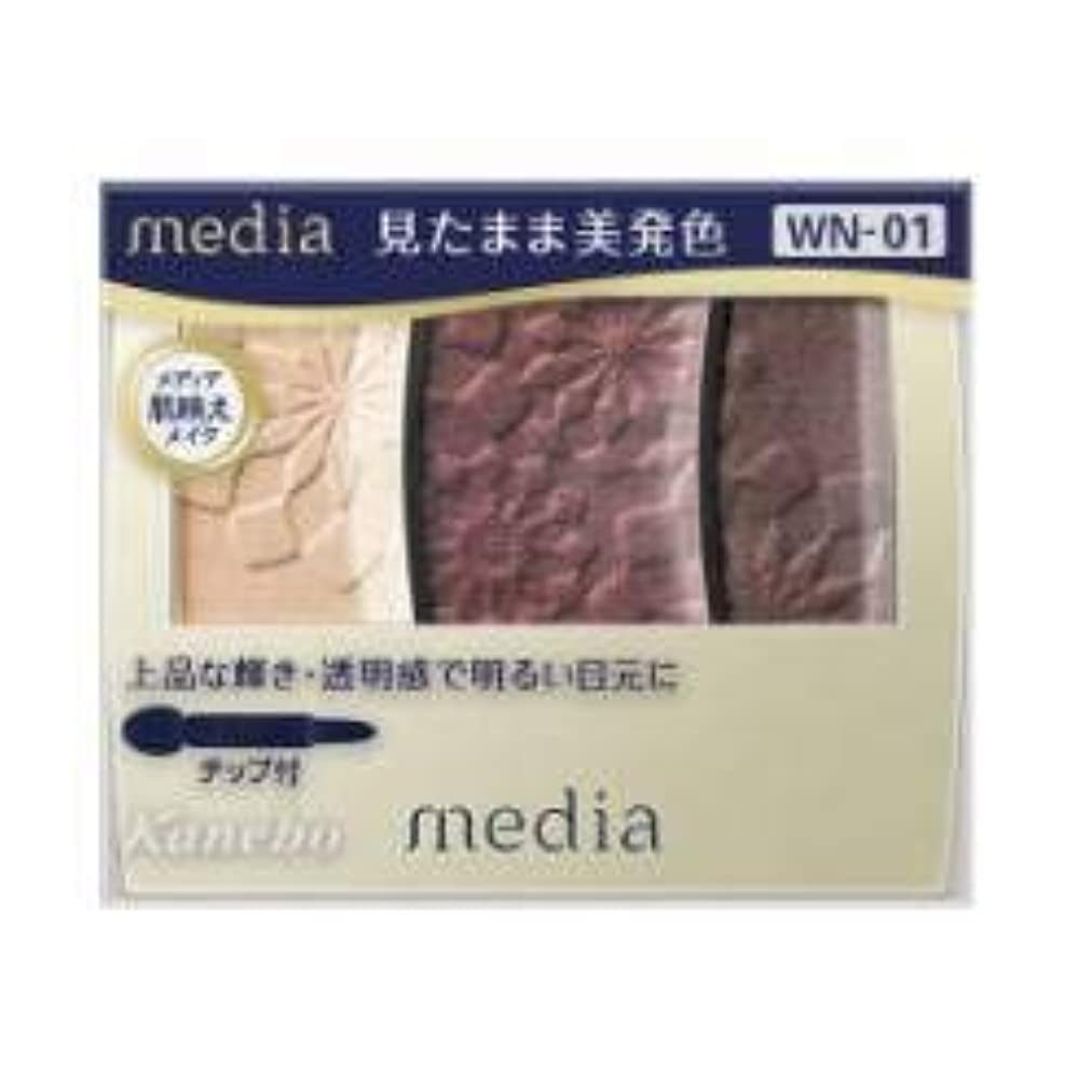 欠如ピケ心臓【カネボウ】 メディア グラデカラーアイシャドウ WN-01