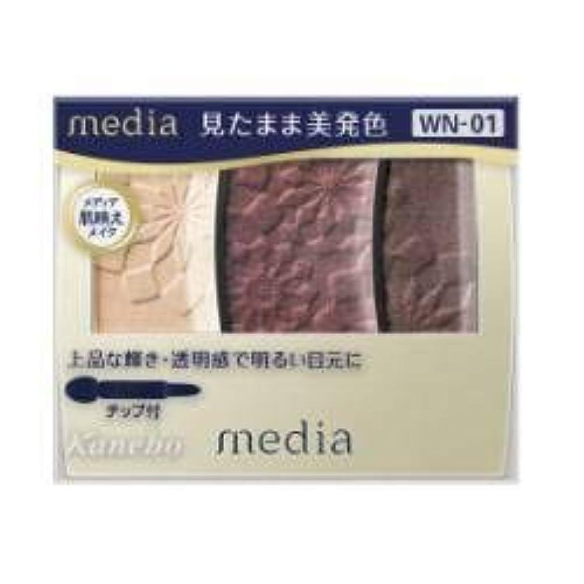 接触剥離未使用【カネボウ】 メディア グラデカラーアイシャドウ WN-01