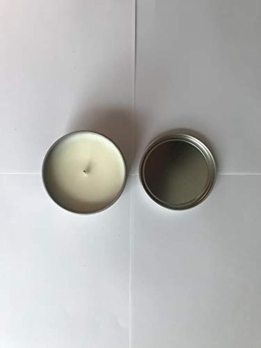 深い溝価値のないTrader Joe's ハニークリスプ アップル 香り付き キャンドル 162g