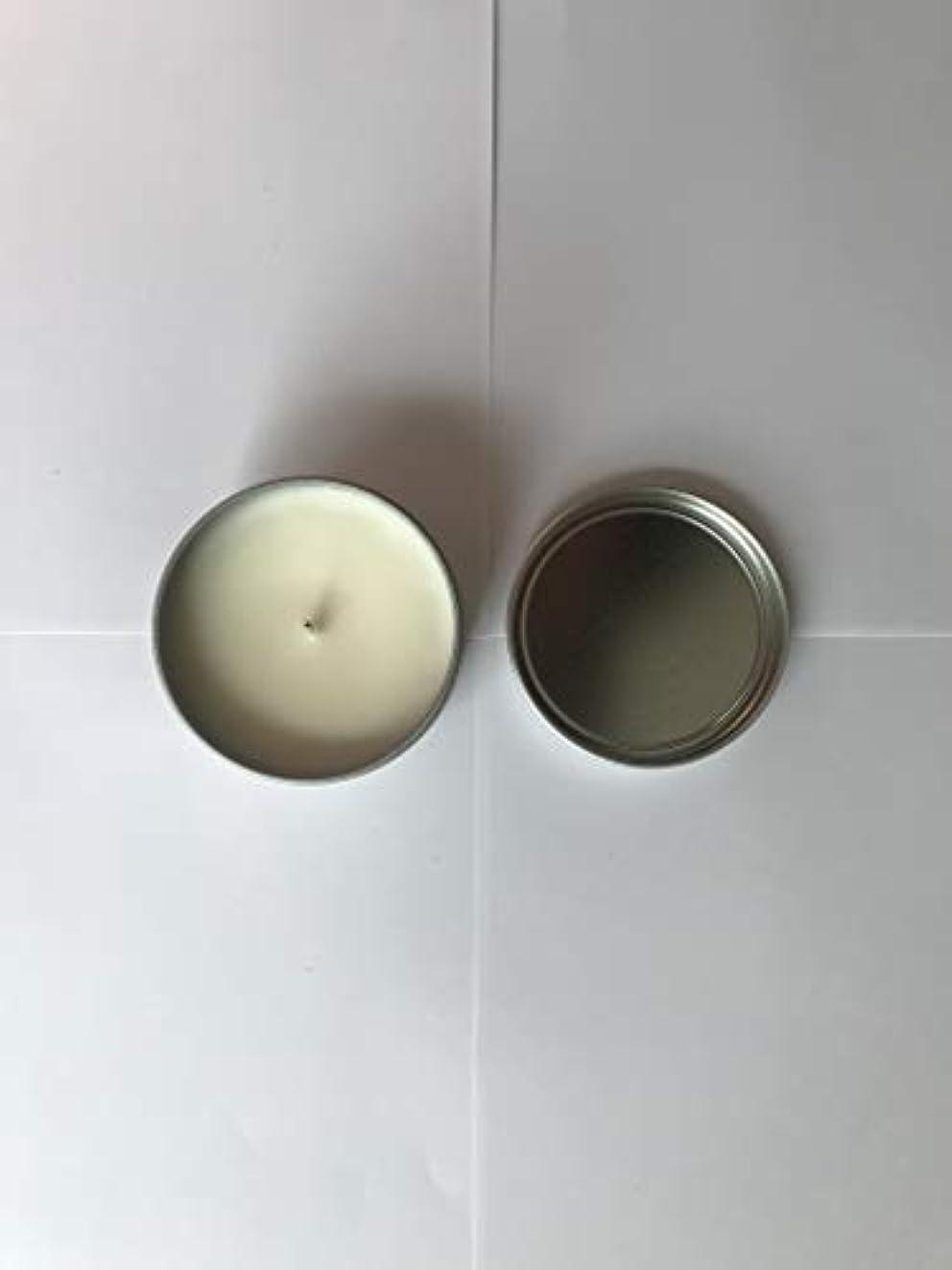 賞賛吸収する絶滅したTrader Joe's ハニークリスプ アップル 香り付き キャンドル 162g