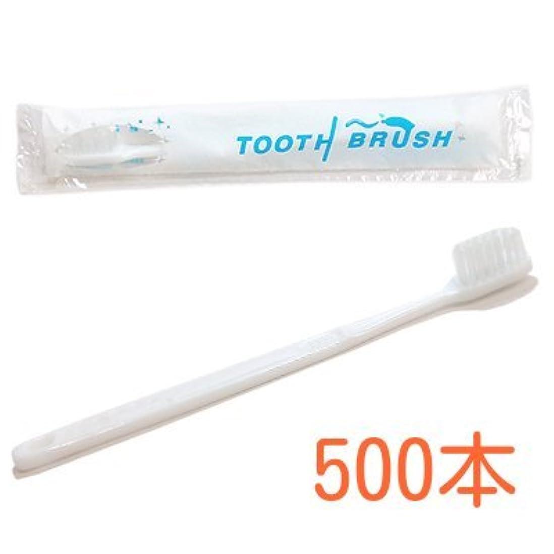 大通りトレッドクリーナー業務用 粉付き歯ブラシ インスタント歯ブラシ 選べるセット 500本