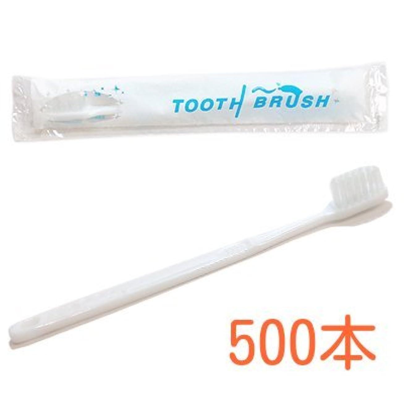 ボット運動する百業務用 粉付き歯ブラシ インスタント歯ブラシ 選べるセット 500本