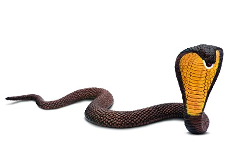 サファリ レプリカ コブラ