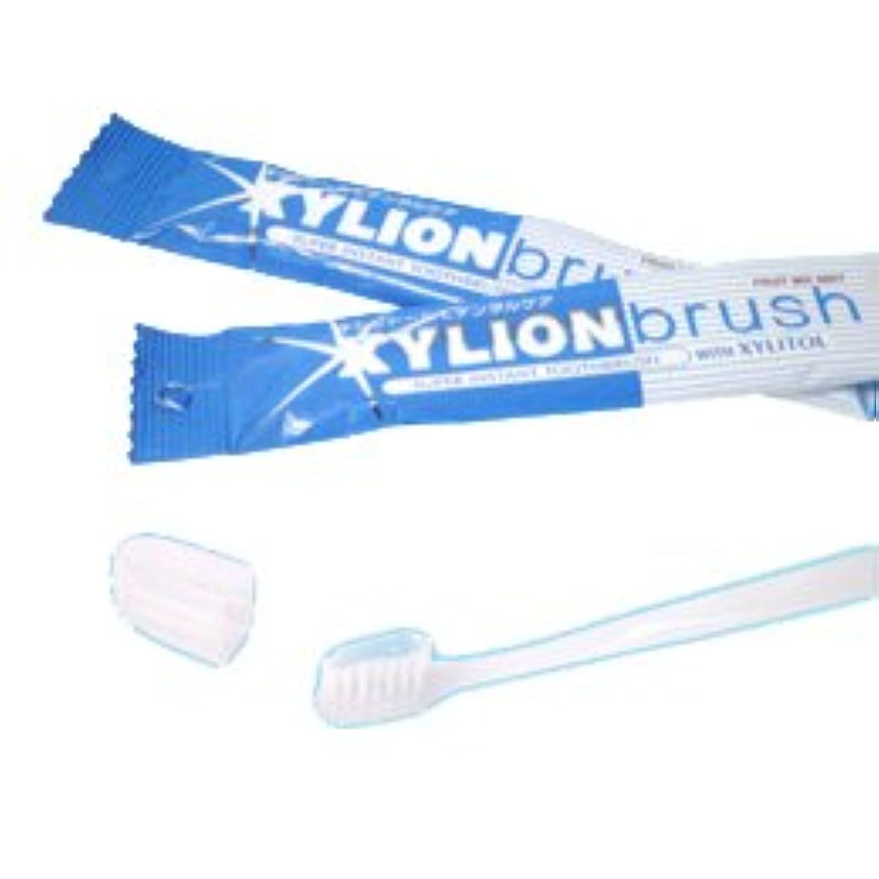ゴネリル航空トランスペアレントキシリオンブラシ XYLION brush 1本