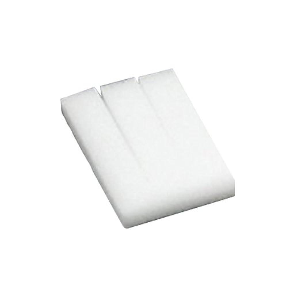 生産性印刷するいらいらする広栄社 クリアデント ステインクリーナー 替えスポンジ (3枚入り)