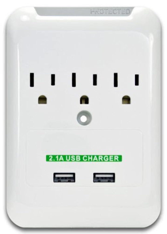 マルクス主義聖なる問題MarginMart Inc. CNE76034 USB 2.1 Amp Charging Surge Wall Tap [並行輸入品]
