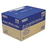 (業務用セット) 王子製紙 スーパーホワイトライラック SWLB4 500枚×5冊入 【×2セット】