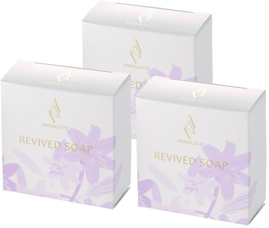 全能エントリ致命的リバイブドソープ~REVIVED SOAP~(至高のAHAフルーツ酸SOAP)100g×3個セット