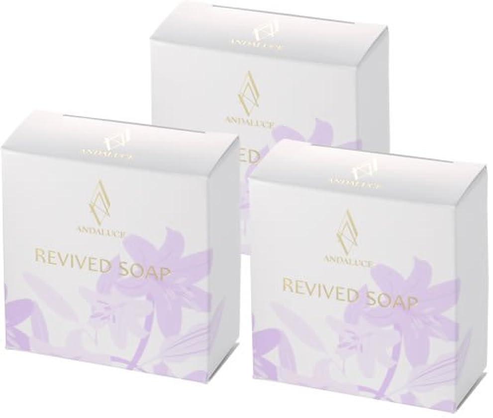 分類する北西フィットネスリバイブドソープ~REVIVED SOAP~(至高のAHAフルーツ酸SOAP)100g×3個セット