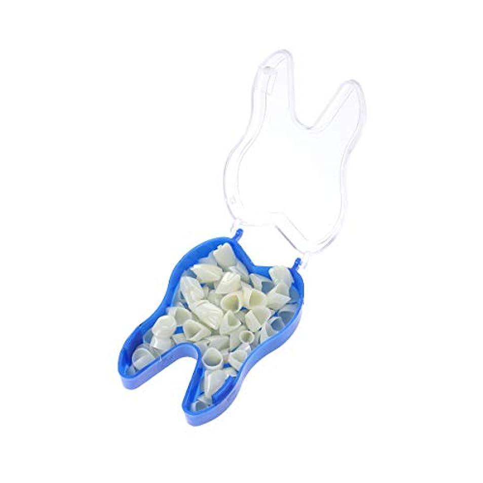 協力的ジョリー前任者Healifty 歯科用仮頭部前歯歯科用焼き陶器前歯歯科材料1小箱