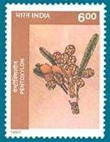 Birbal Sahni Institute of Paleobotany Institution, Lucknow Pentoxylon Rs.6 Indian Stamp