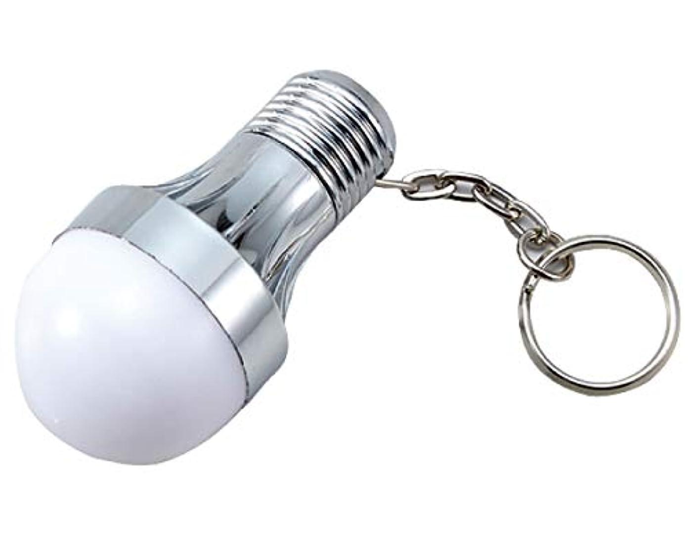 嫌い現在期待する豆球型 LEDライト キーホルダー ライト 灯り 豆電球 携帯 つける 防災 レジャー