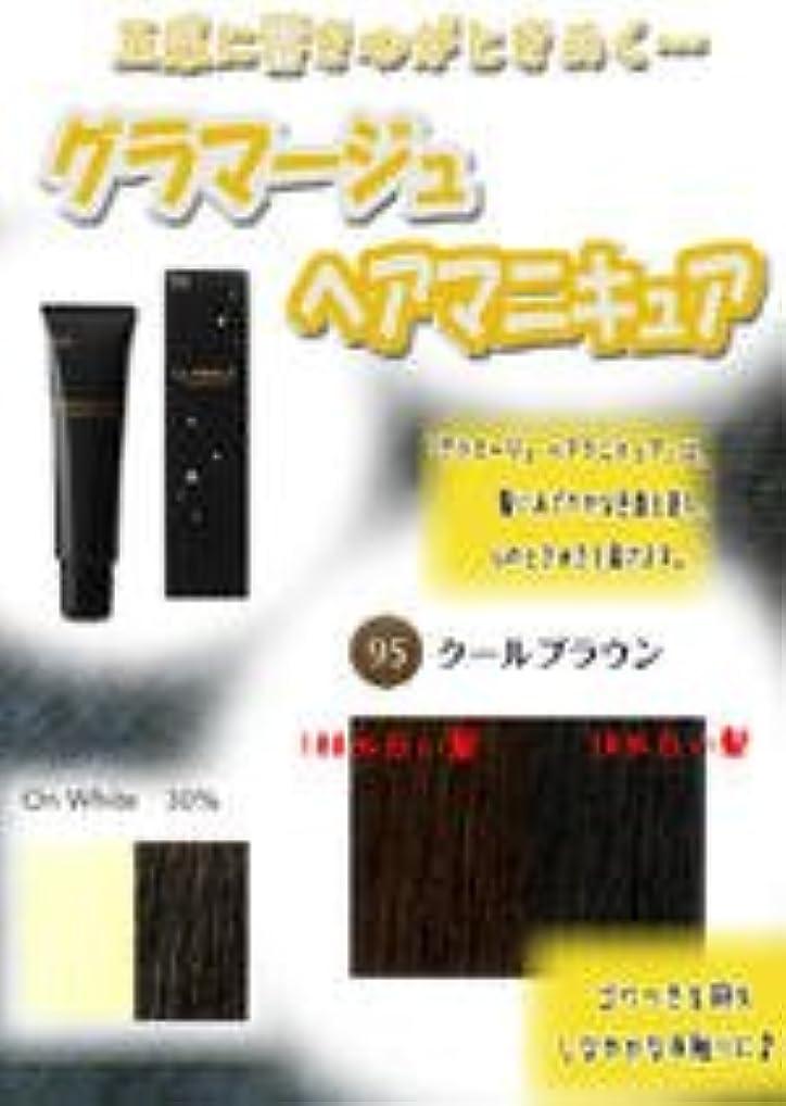 スナッチ問題ボスHOYU ホーユー グラマージュ ヘアマニキュア 95クールブラウン 150g 【ブラウン系】