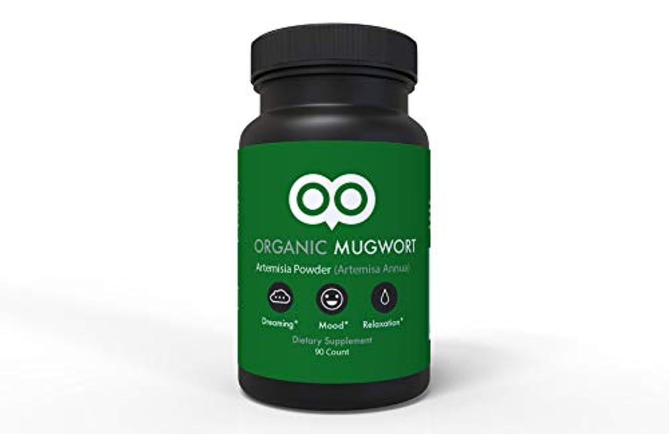 忙しい機械環境保護主義者Dream Leaf ヨモギ カプセル 450 mg 90 カプセル ビーガン ヨモギ アルテミスサ アヌア
