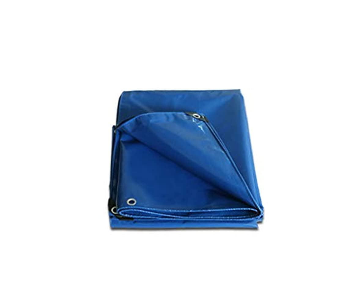 意図スクラップ推進力Tarpaulin 屋外家庭用ピクニックキャンプ/オプションの6色のための防水ポンチョ厚い編み上げターポリン Garden tent (Color : Blue, Size : 4*6m)