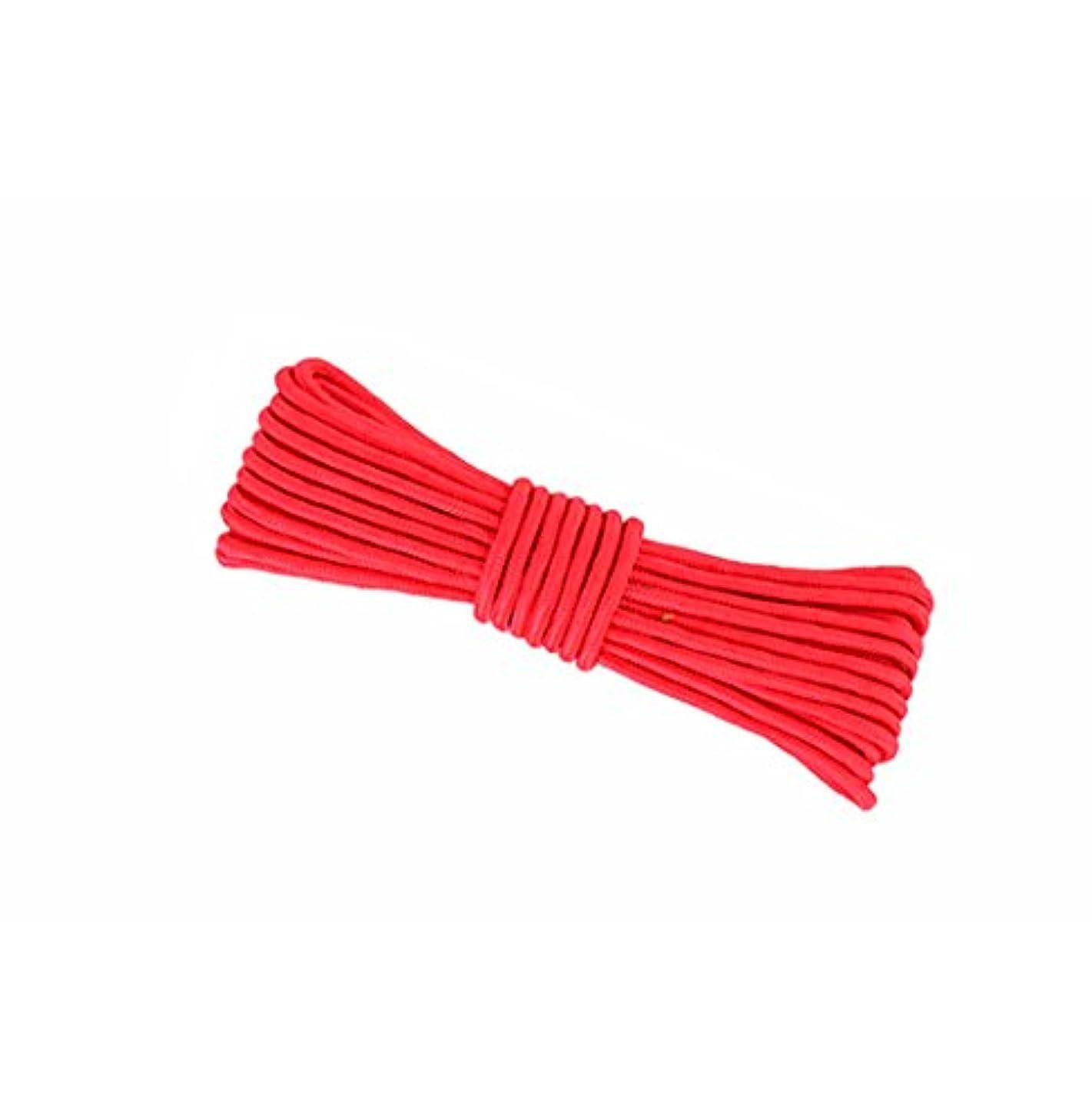 掃除抵当ダルセット登山用ロープ、赤10M、20M、50M、100M、ロッククライミングロープ、直径8mm / 10mmアウトドア探検エスケープレスキューロープ、高強度ナイロンロープ安全ロープ (色 : Diameter-10mm, サイズ さいず : 100M)