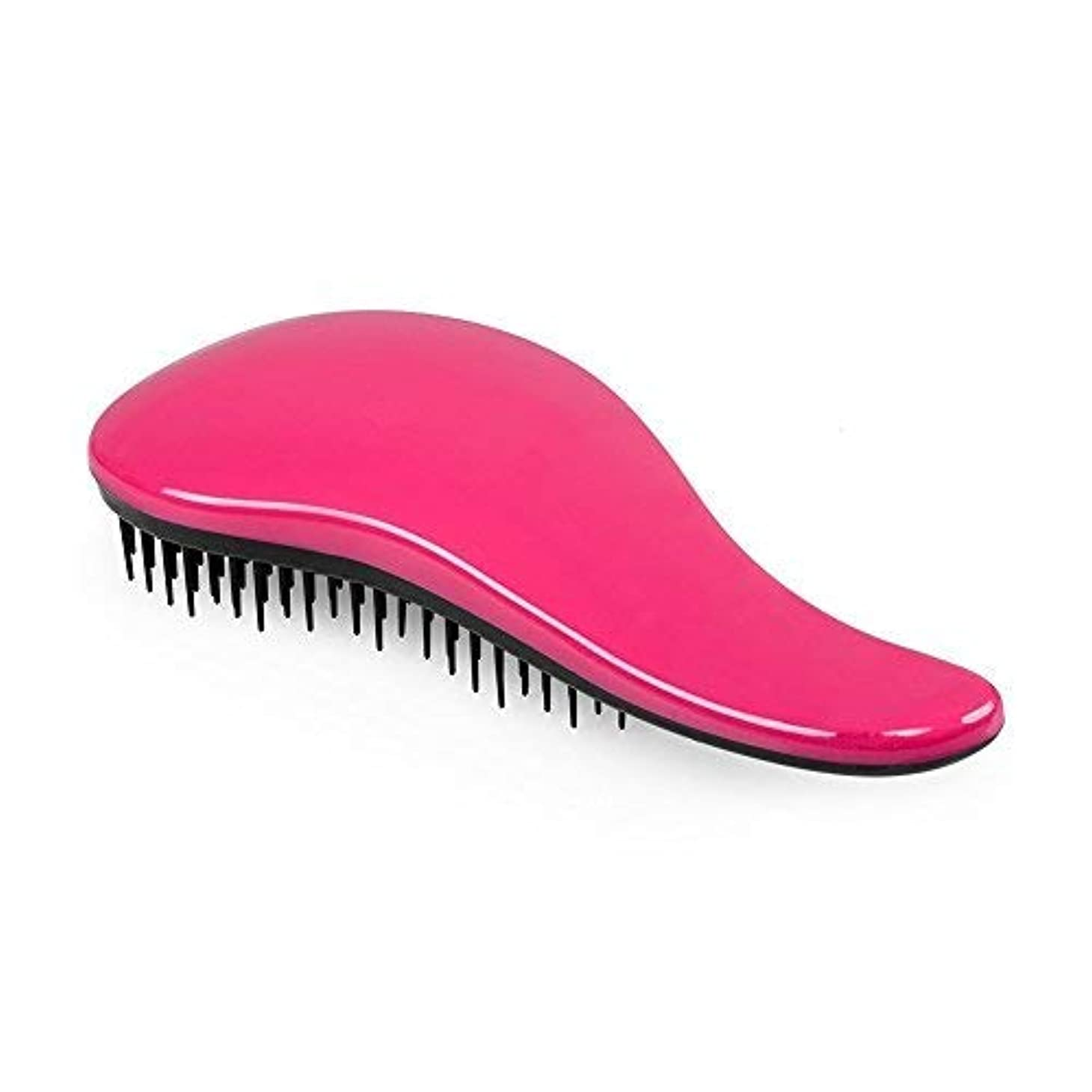レールハドル現代のShenTengDa Detangling Brush Glide The Best Detangler Wet Shower Comb for Women/Men/Kids/Girls/Boys, Use for Wet...