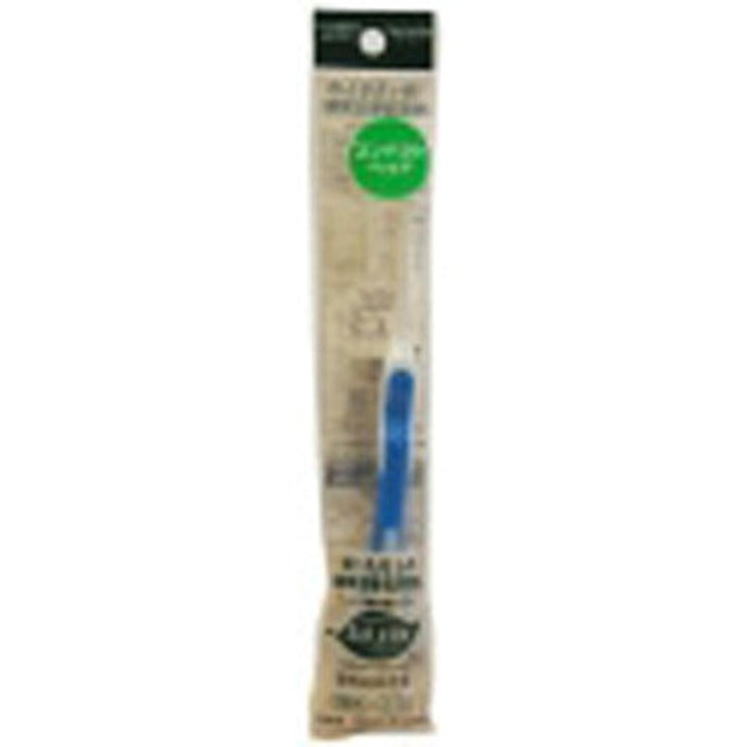 かもめも黒サレド ヘッド交換式歯ブラシ お試しセット コンパクトヘッド ブルー