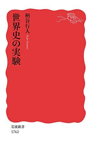 世界史の実験 (岩波新書 新赤版)