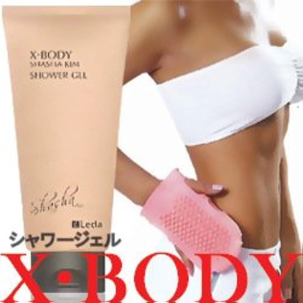 夢中異議大工X・ボディ シャーシャーキム・シャワージェル【300ml】