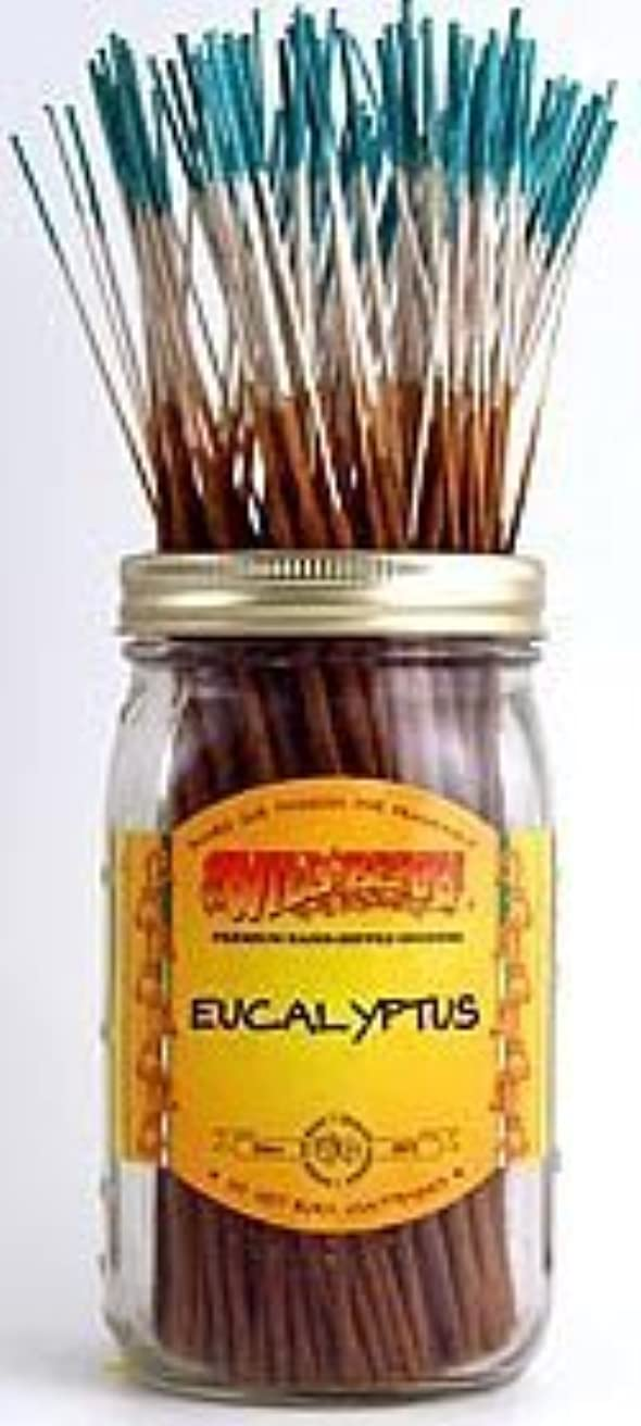 倍増お別れ好むEucalyptus - 100 Wildberry Incense Sticks [並行輸入品]