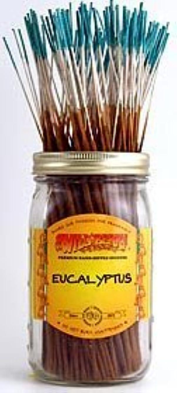 Eucalyptus - 100 Wildberry Incense Sticks [並行輸入品]