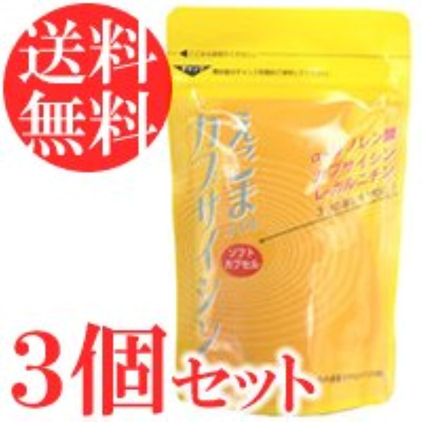 憂鬱な土砂降りわかるえごまオイル カプサイシン 120粒×3袋セット(ソフトカプセル)