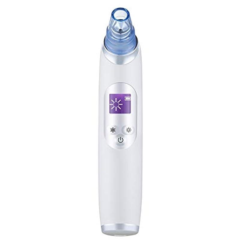 お香後継磨かれた真空気孔クリーナー、ポータブル電気冷却と加熱技術引き締めと輝く角質にきびにきびギフト用女性 (Color : B)