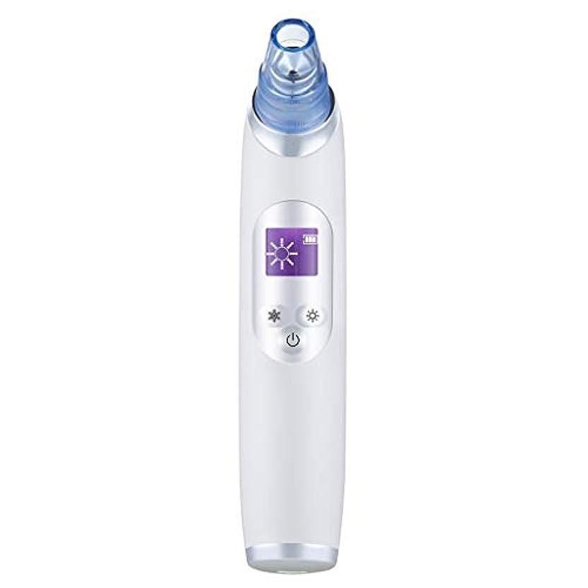 コンバーチブル描くポーズ真空気孔クリーナー、ポータブル電気冷却と加熱技術引き締めと輝く角質にきびにきびギフト用女性 (Color : B)