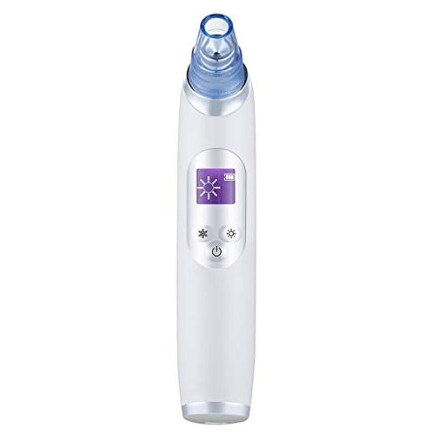生物学どきどき買う真空気孔クリーナー、ポータブル電気冷却と加熱技術引き締めと輝く角質にきびにきびギフト用女性 (Color : B)