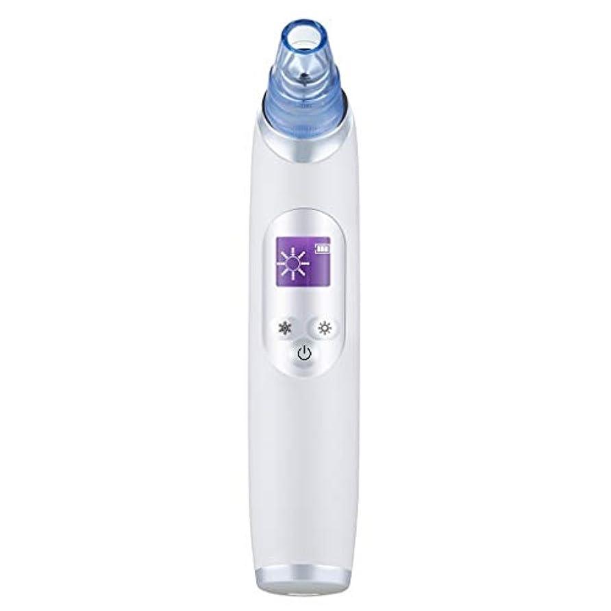 エスニックライン命令真空気孔クリーナー、ポータブル電気冷却と加熱技術引き締めと輝く角質にきびにきびギフト用女性 (Color : B)