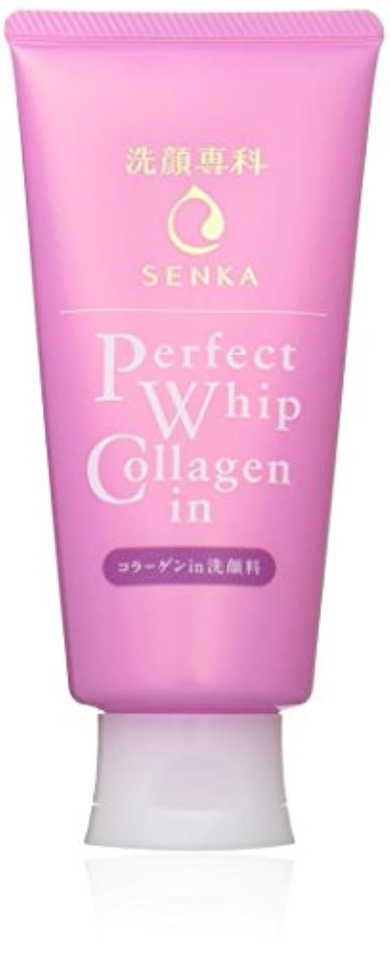 宿蒸留する安全でない洗顔専科 パーフェクトホイップ コラーゲンin 洗顔フォーム 120g