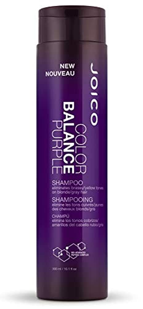 に付けるレオナルドダアシュリータファーマンジョイコ Color Balance Purple Shampoo (Eliminates Brassy/Yellow Tones on Blonde/Gray Hair) 300ml/10.1oz並行輸入品