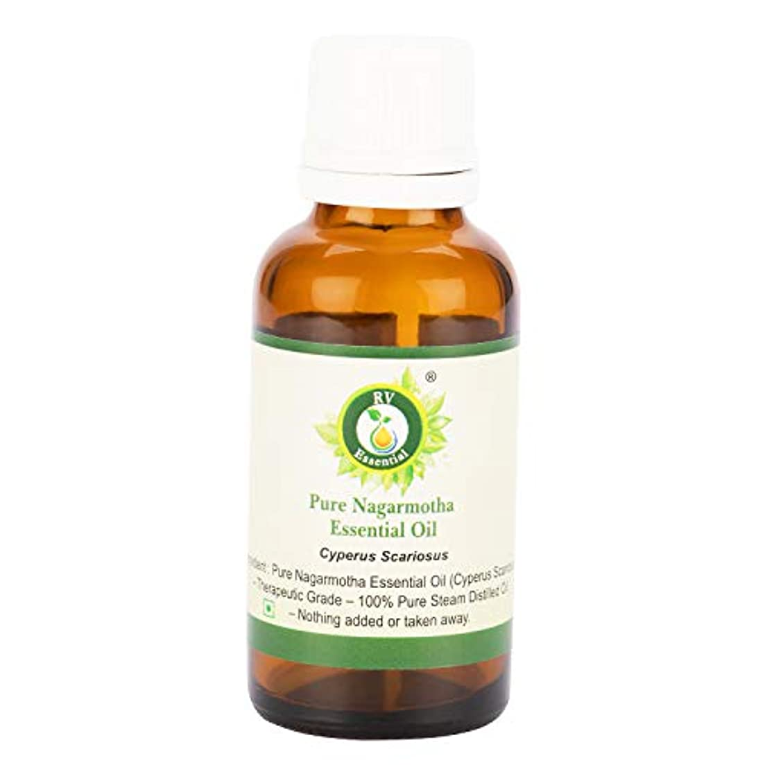 ねばねばるゲートピュアNagarmothaエッセンシャルオイル630ml (21oz)- Cyperus Scariosus (100%純粋&天然スチームDistilled) Pure Nagarmotha Essential Oil