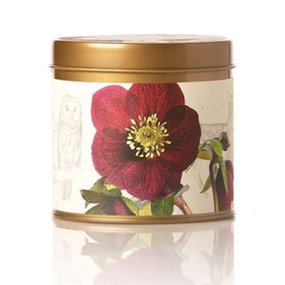 傾向高原四半期(Oak Moss & Myrrh) - Rosy Rings Signature Tin Candle (Oak Moss & Myrrh)