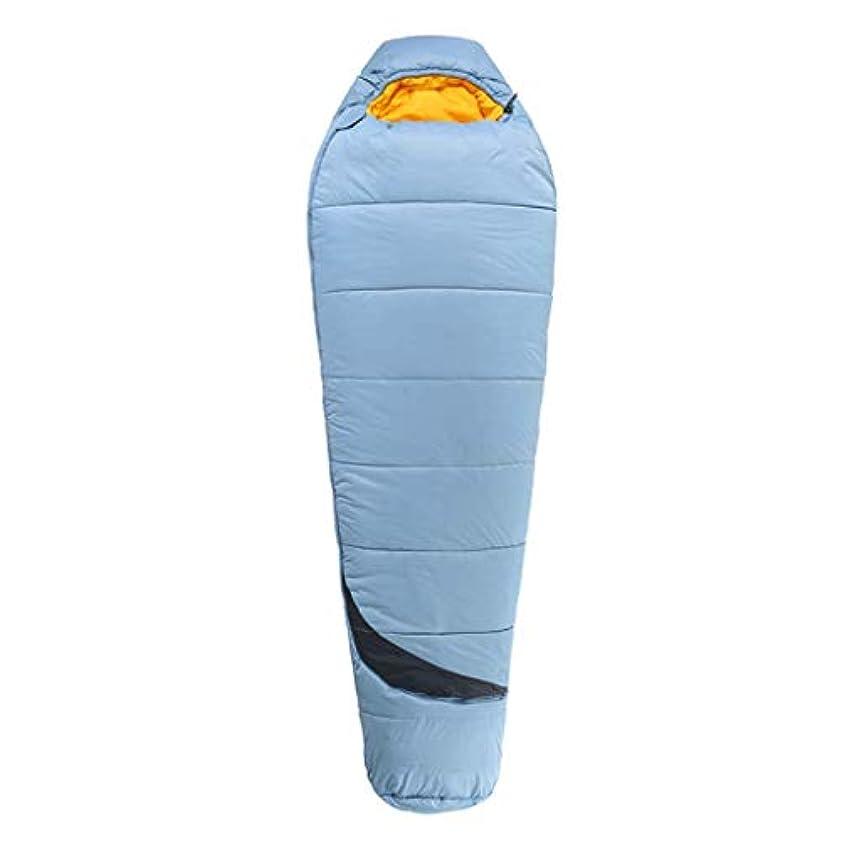 スイング公平物質ミイラ寝袋大人の屋外キャンプママオフィスランチブレイクビーチ (色 : 2#, サイズ さいず : 82.67 * 31.49in)