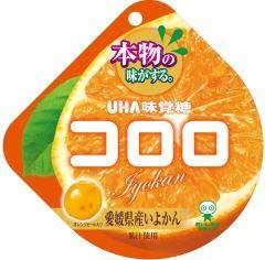 味覚糖 コロロ 愛媛県産 いよかん 40g ×6袋