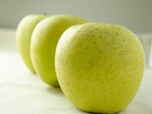 フルーツなかやま 青森産 王林 りんご 13個入 化粧箱 幅9�p以上 高さ9�p以上 糖度15度以上 東京都卸売市場のリンゴ専門人が選んだ厳選品