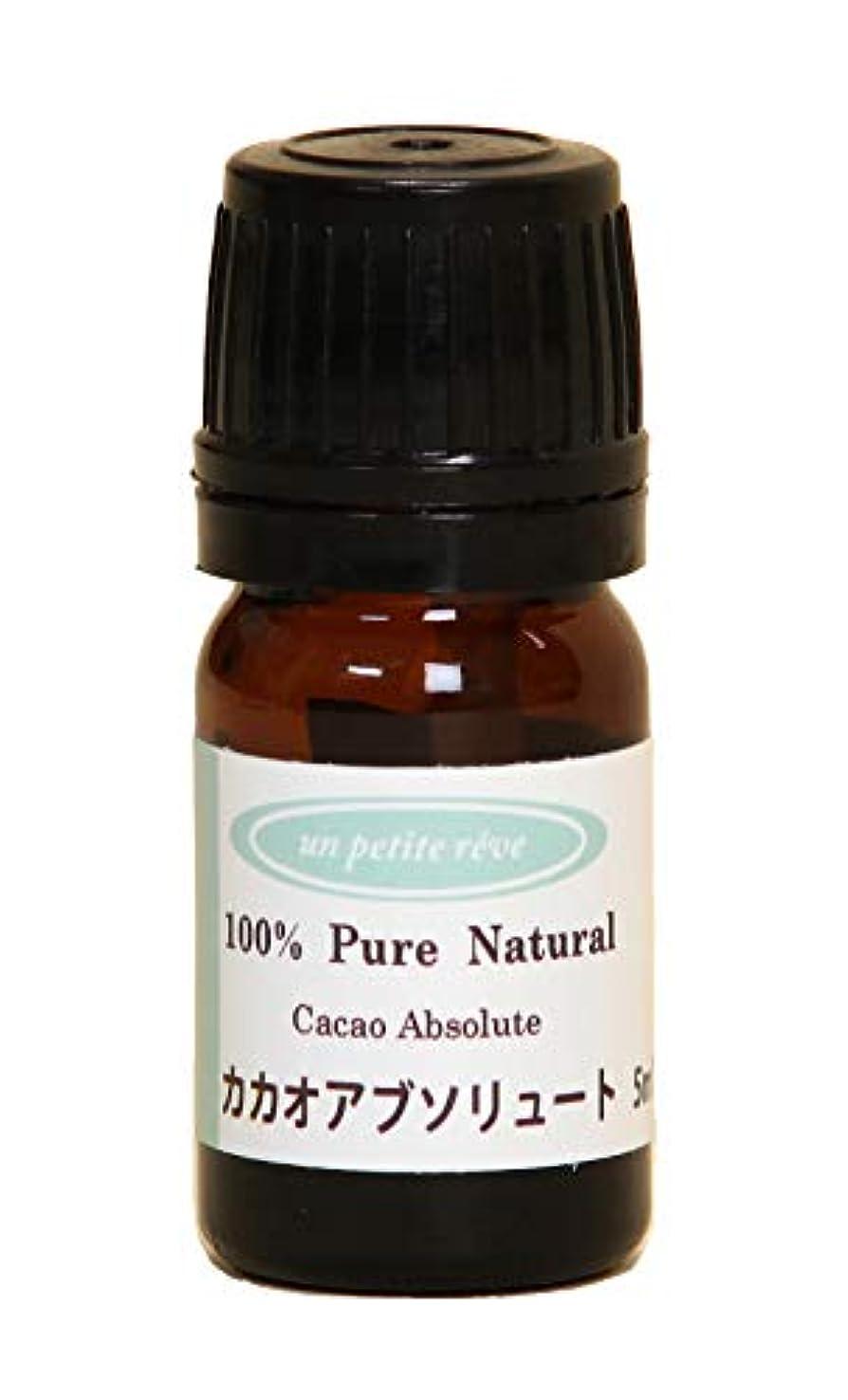 触覚花瓶粘り強いカカオ(ココア) アブソリュート 5ml 100%天然アロマエッセンシャルオイル(精油)