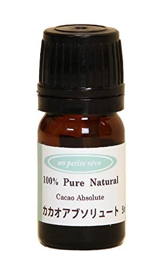 瞑想的苦難用量カカオ(ココア) アブソリュート 5ml 100%天然アロマエッセンシャルオイル(精油)