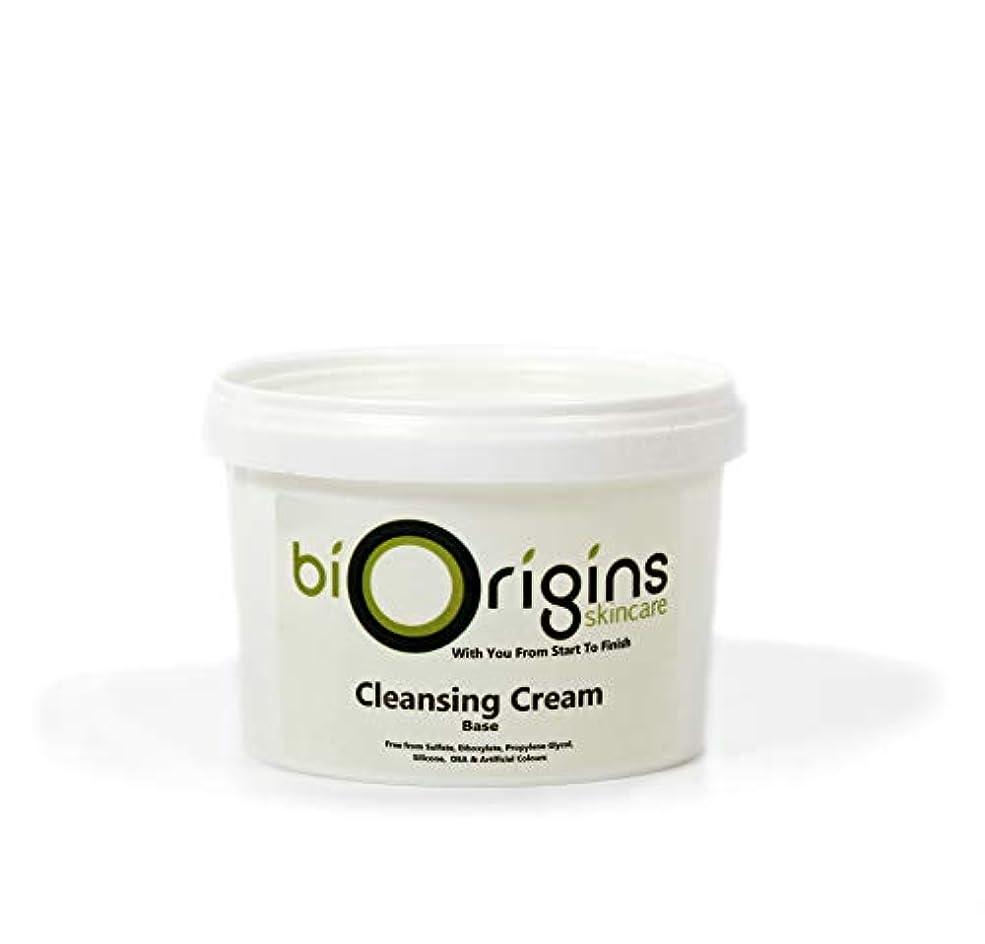 憂慮すべき枯渇する寺院Clarifying Cleansing Cream - Botanical Skincare Base - 500g