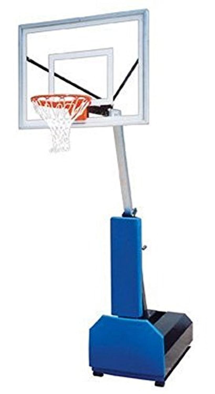 最初チームFury II steel-acrylicポータブルバスケットボールsystem44 ;ゴールド