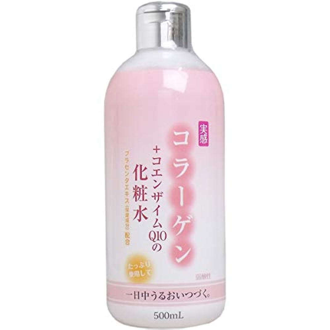 勧告静める毎回コラーゲン+コエンザイムQ10 化粧水 500mL