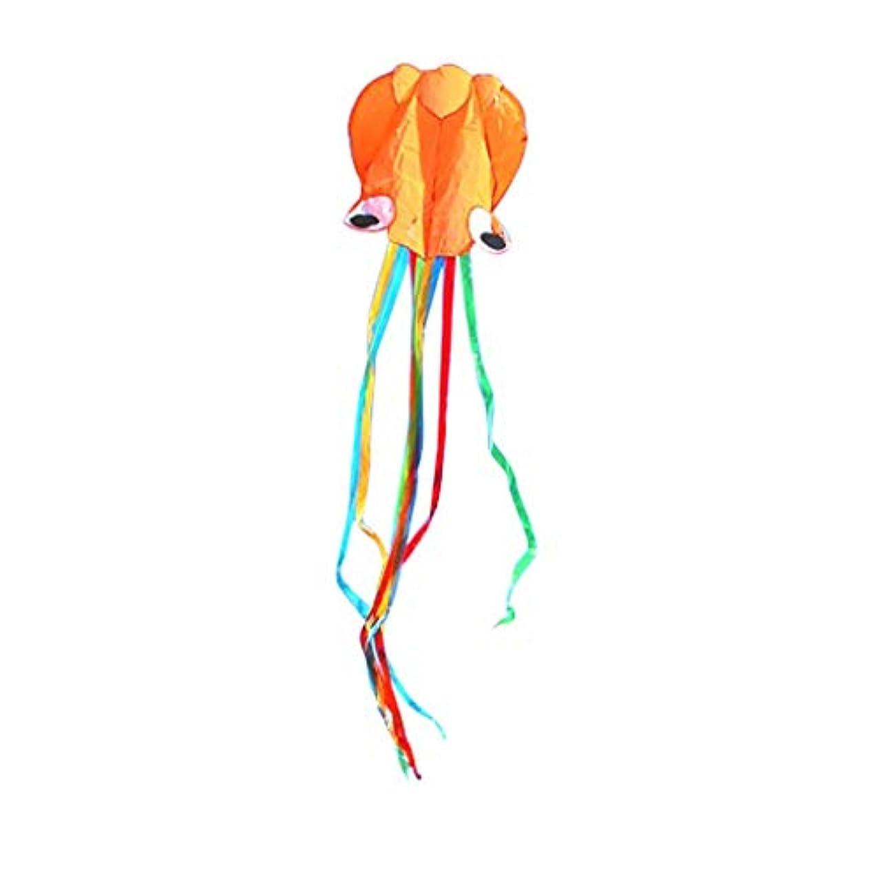 アカデミークリープのみ子供のソフトウェアタコのための凧 - 美しい大型簡単チラシ凧