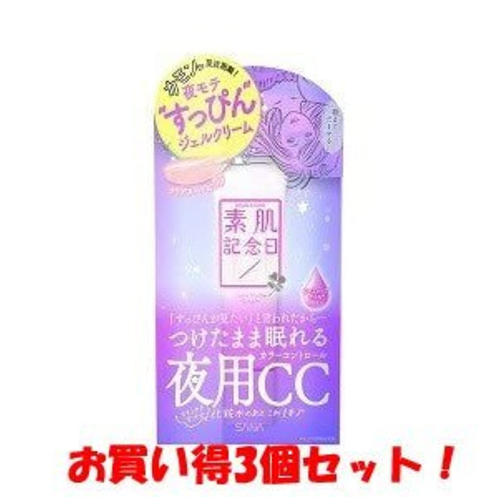 十分アルプス手書きサナ(SANA)素肌記念日 フェイクヌードクリーム 30g/新商品/(お買い得3個セット)