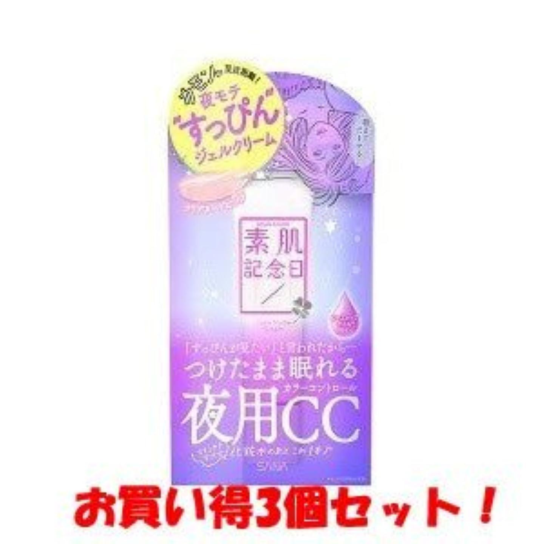 びん夕暮れ疼痛サナ(SANA)素肌記念日 フェイクヌードクリーム 30g/新商品/(お買い得3個セット)